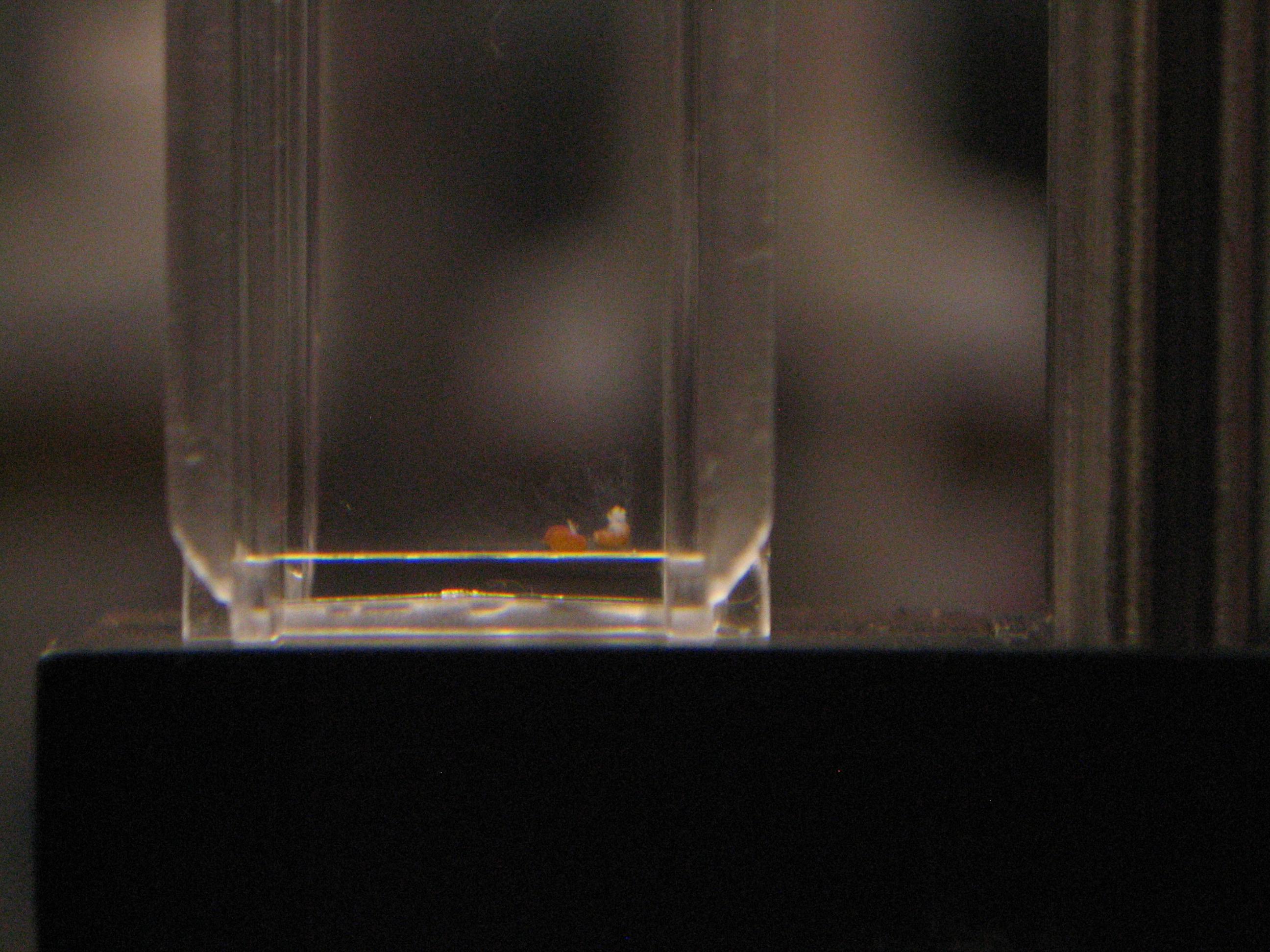 Dark V in tap water